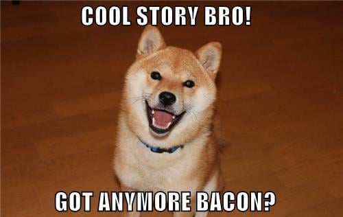 funny-dog-pictures-cool-story-bro-got-an