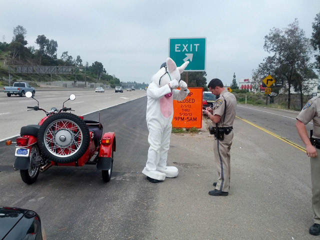 easter bunny pulled over