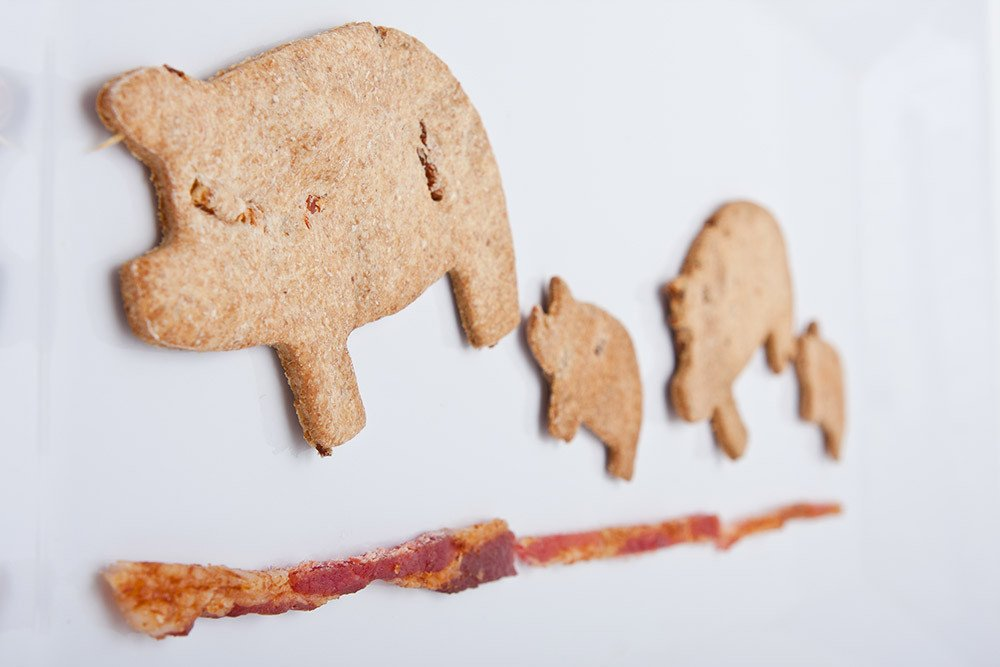 bacon_dog_treats_2_1024x1024 (1)aaaa