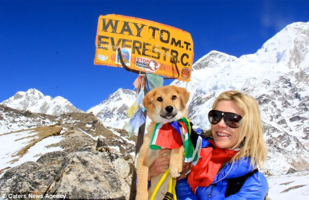 everestdog1