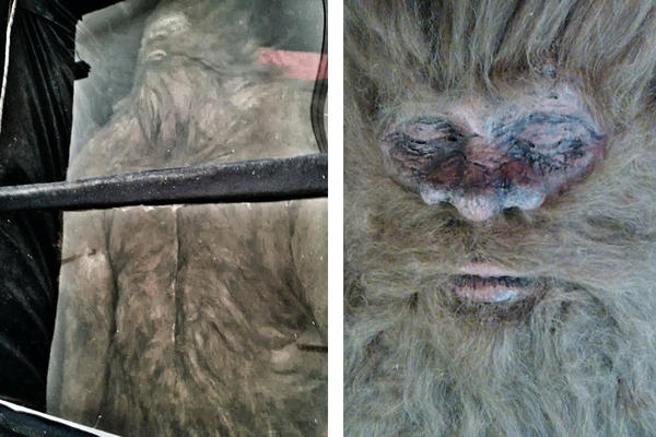 bigfoot-diptych_full_600