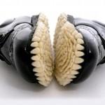 teeth shoes