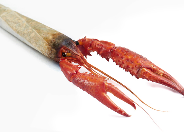 crawfish-joint