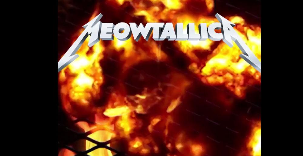 meowtallica
