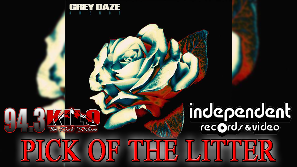 Pick Of The Litter: Grey Daze