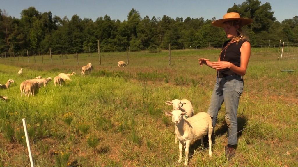 Farmers on Forest Grove Farm