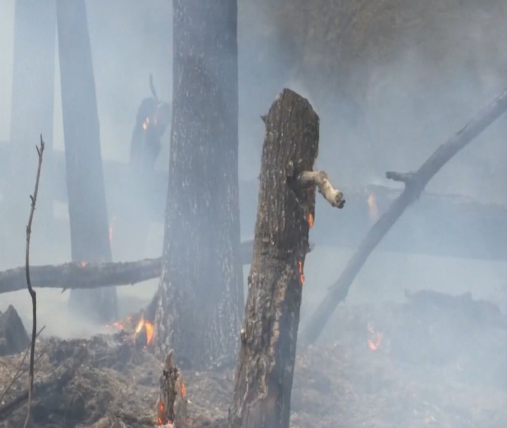 Wildfires continues to burn in north Georgia
