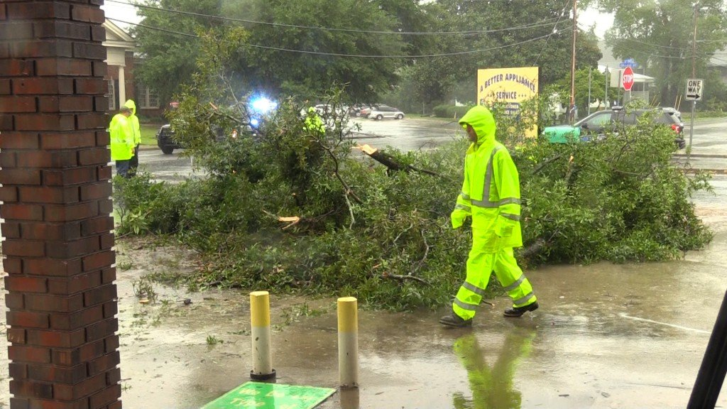 Crews in Eastman clearing up trees after Tropical Storm Hermine.