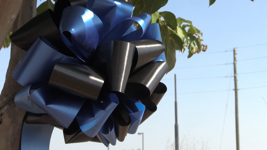 The black and blue bows cost just $10
