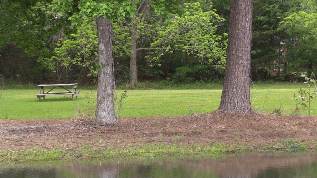 Lake Leisure is a calming place for veterans to relax and go fishing.