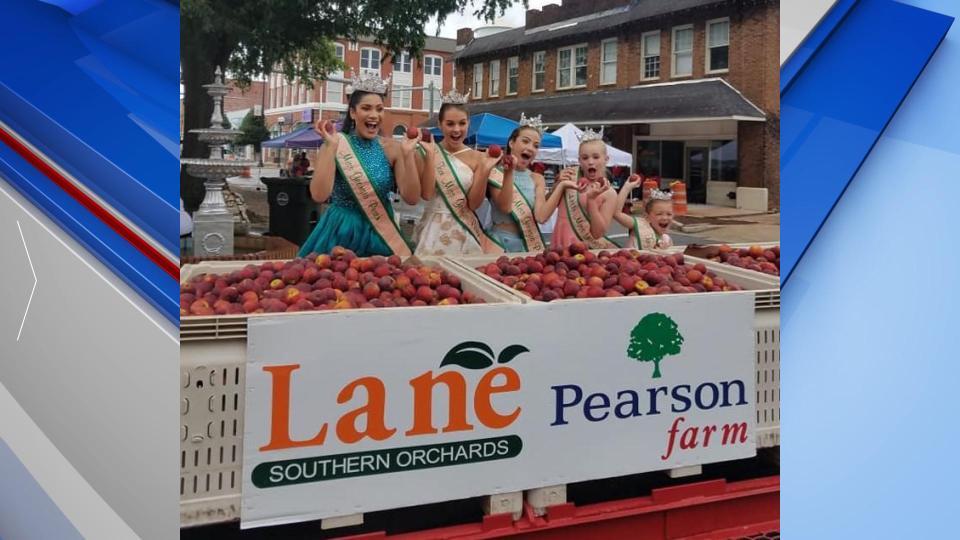 Peach Queens Web