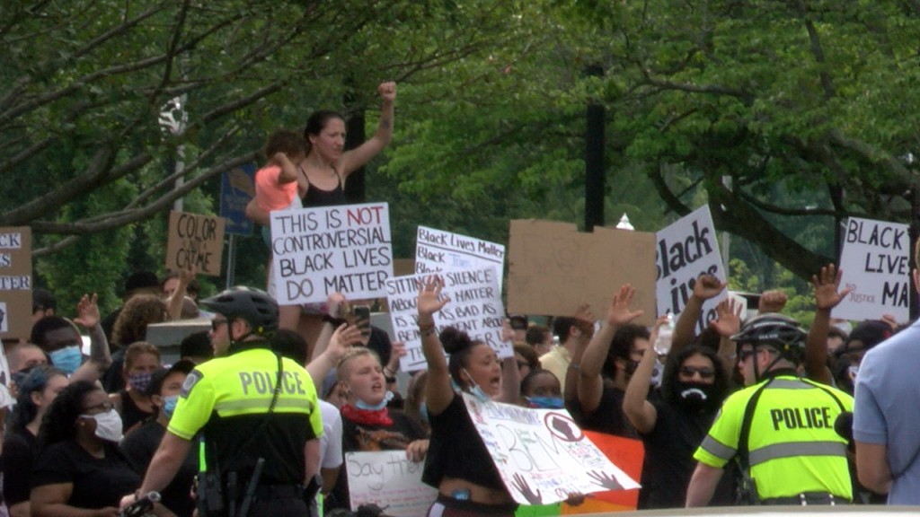 Taunton Protest