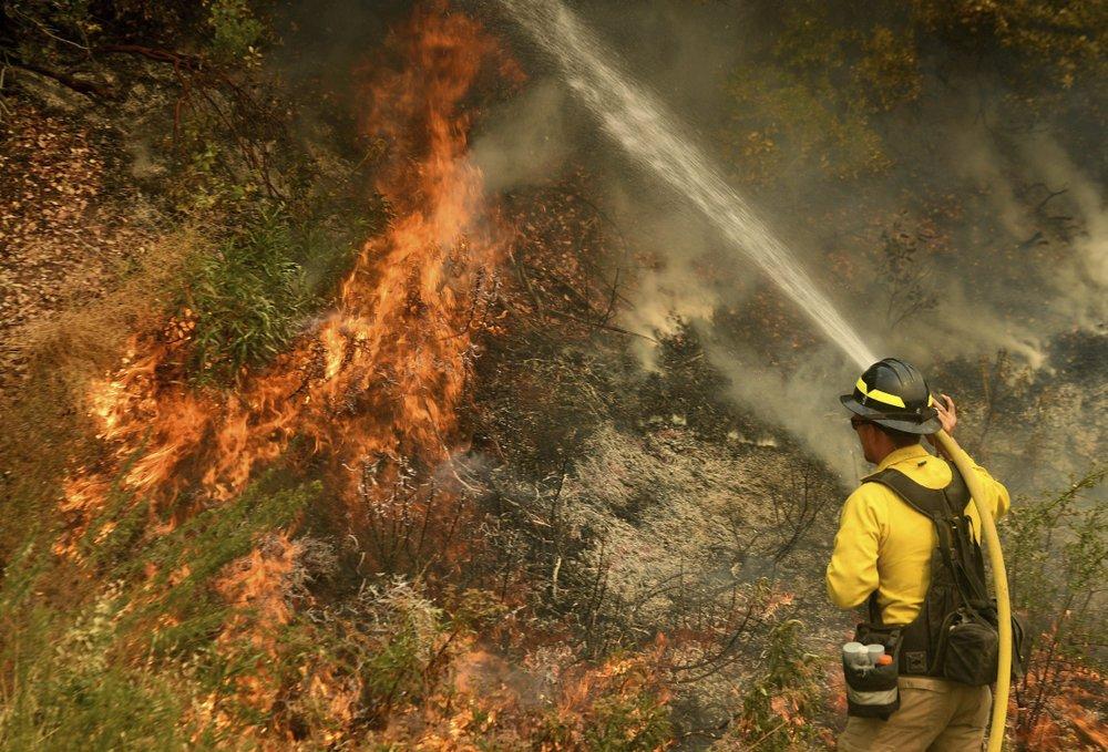 Wildfire 91020
