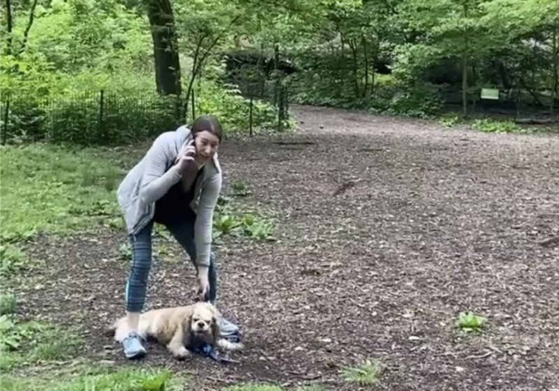 Racist Dog Woman