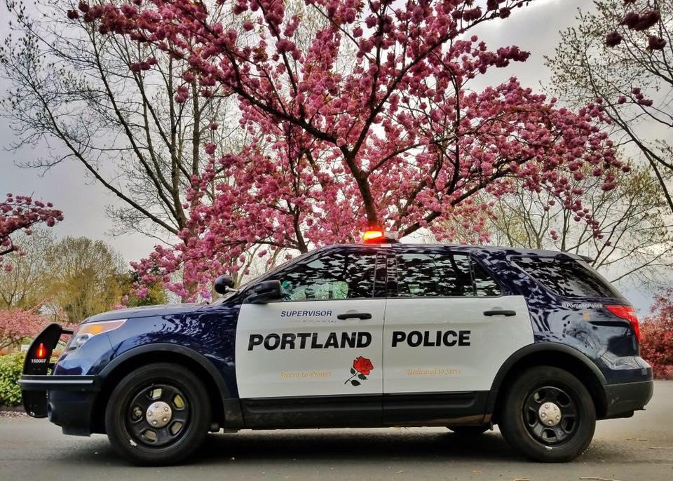 Portland Cruiser