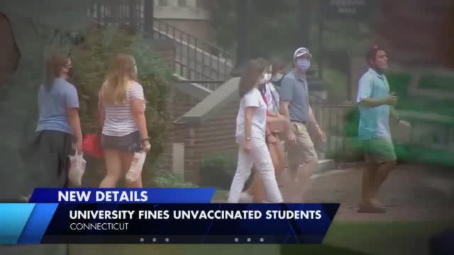 Quinnipiac University Fines
