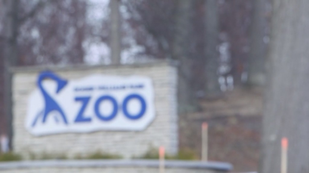 Rwu Zoo Looking For New Director