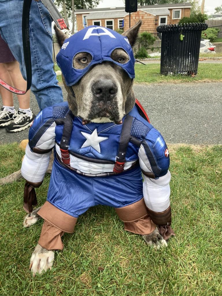 Smokey won first place as Captain America!