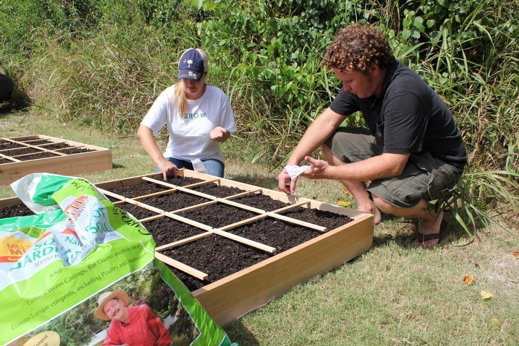 Midlands Food Bank Plants Gardens - ABC Columbia