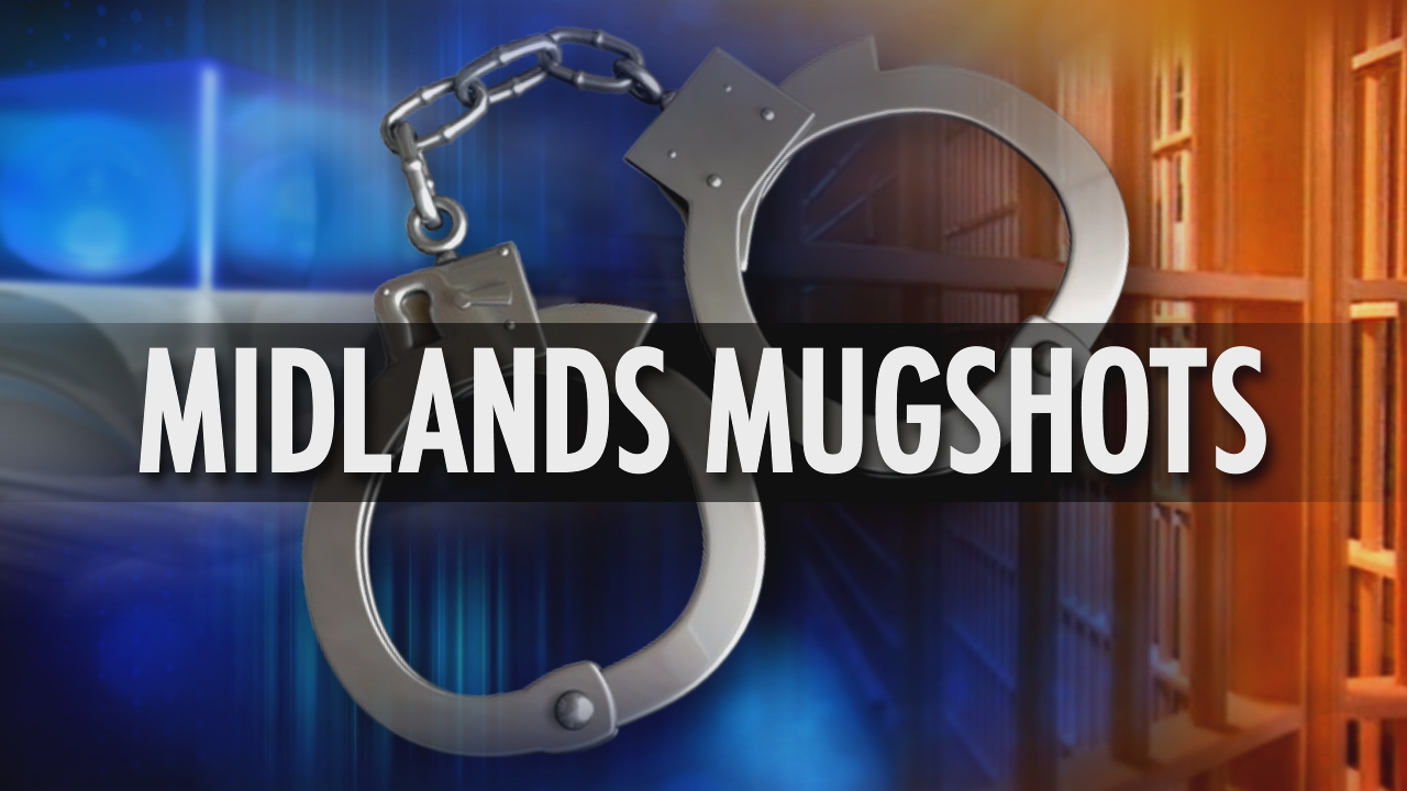ABC Columbia Midlands Mugshots