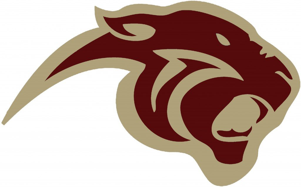Maroon And Gold 1 Panther