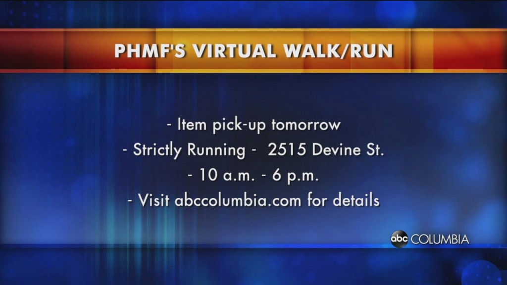 Phmf Virtual