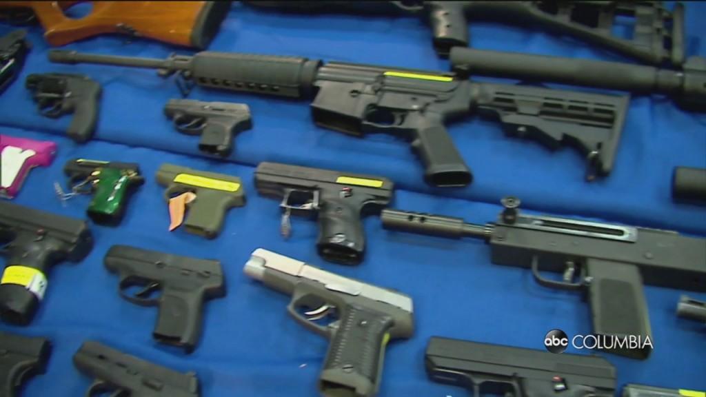 Biden Guns