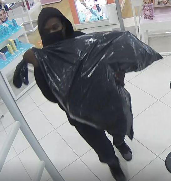 Lpd Ulta Shoplift 1