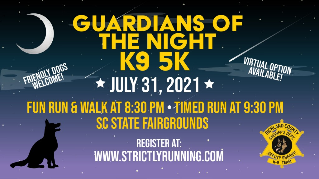 Guardians Of The Night Flyer