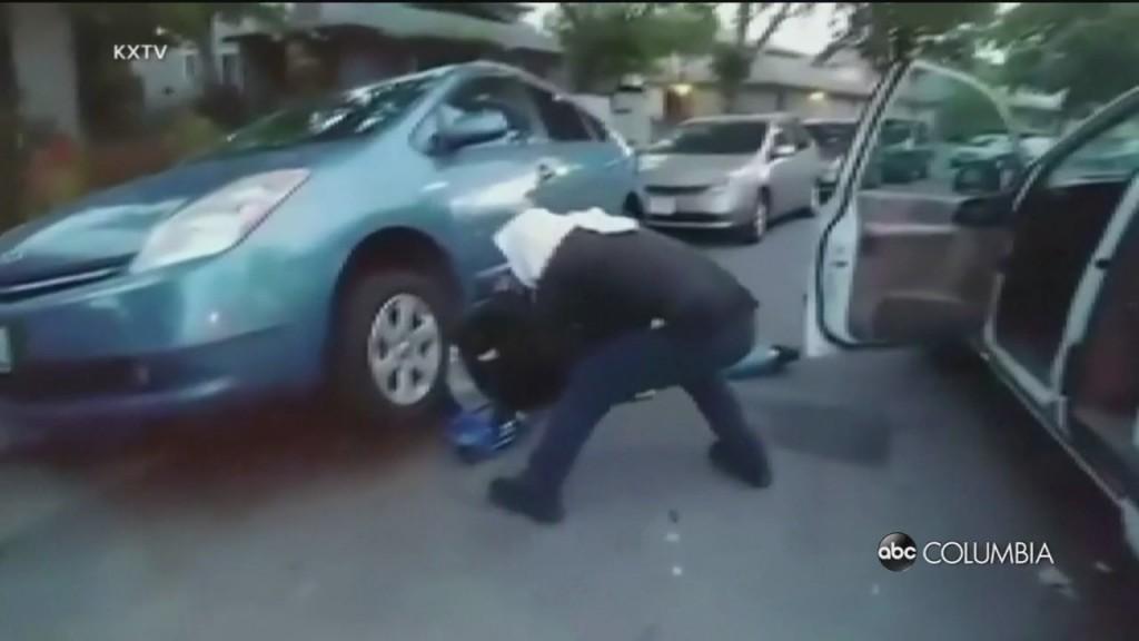 Car Part Thieves
