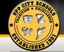 Oppcityschools