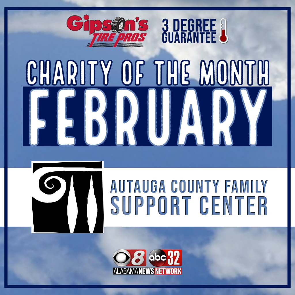 Gibson 3dg Charity Of The Month