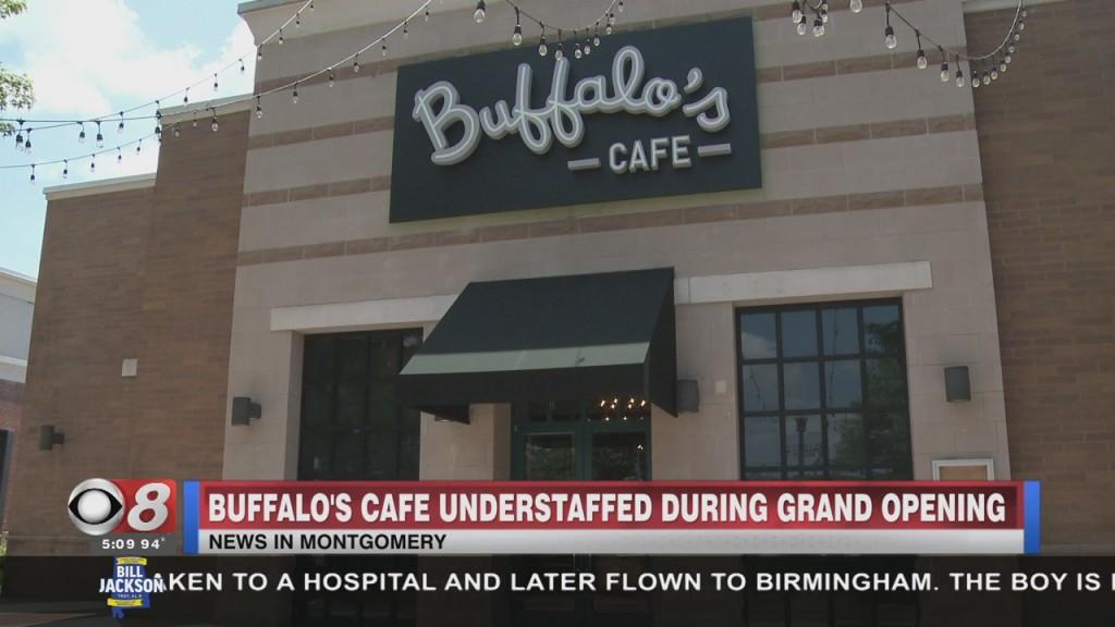 Buffalos Open At Eastchase