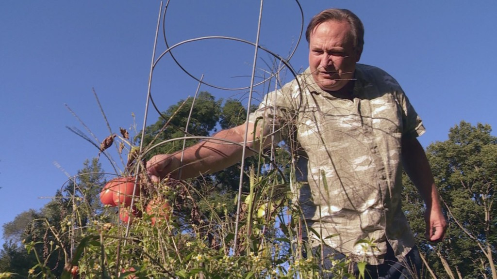 Flooding ruins crops and wipes out community gardens amid already tight market