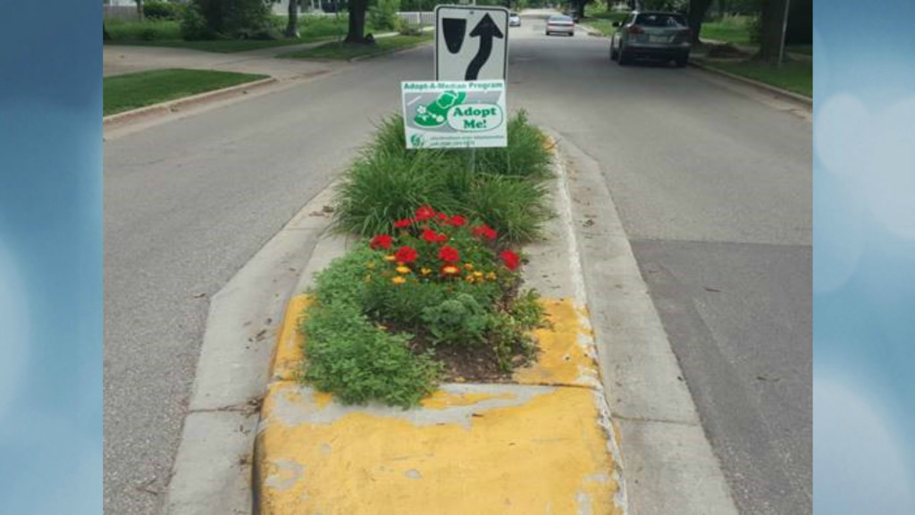 Madison engineering division encourages residents to 'Adopt-a-Median'