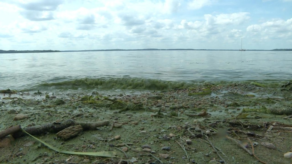 Madison beaches close due to high levels of bacteria
