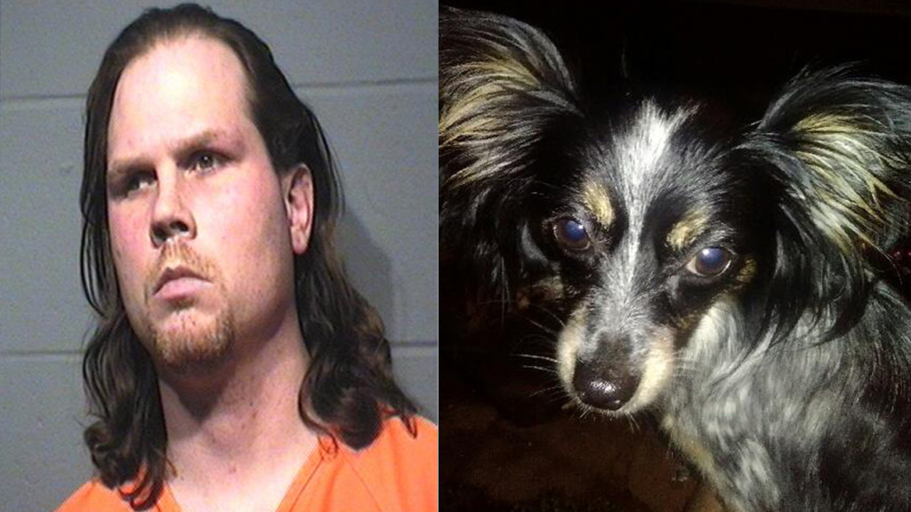 Portage man faces animal-cruelty charges in dog's death
