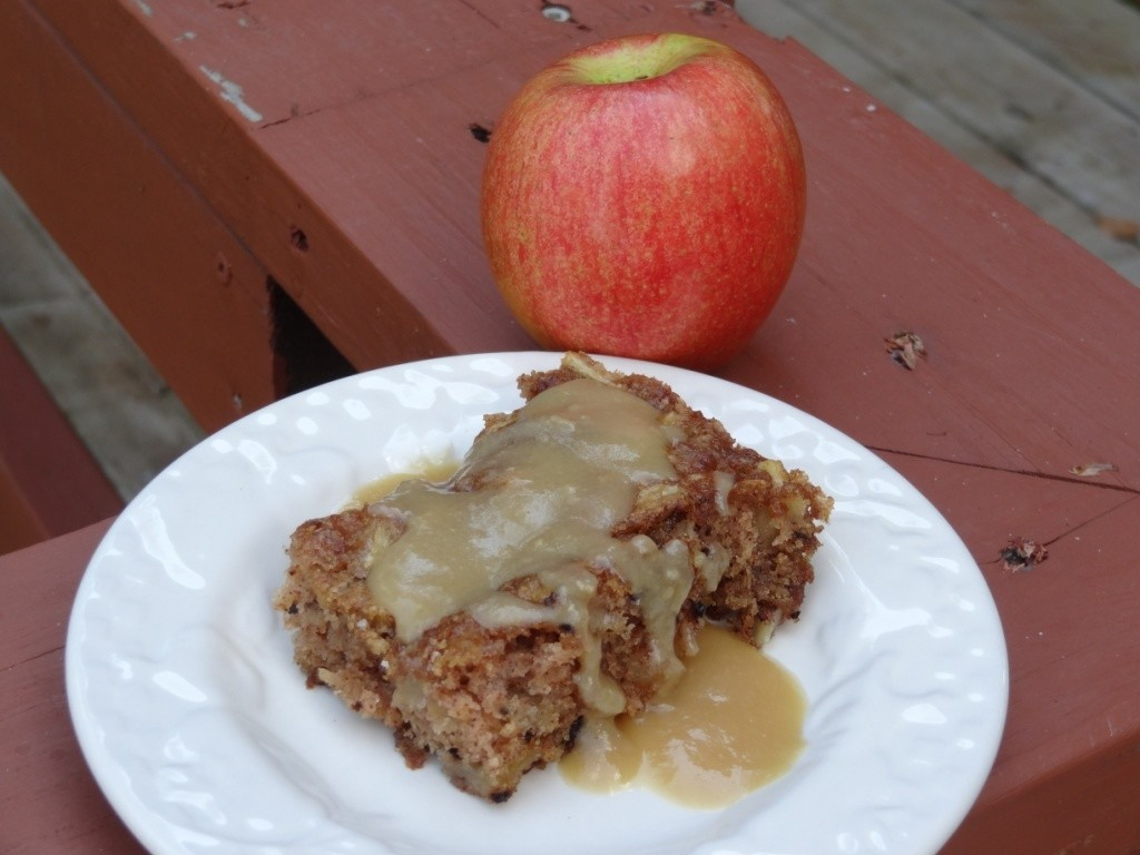 Donna's apple cake with hot buttered rum sauce