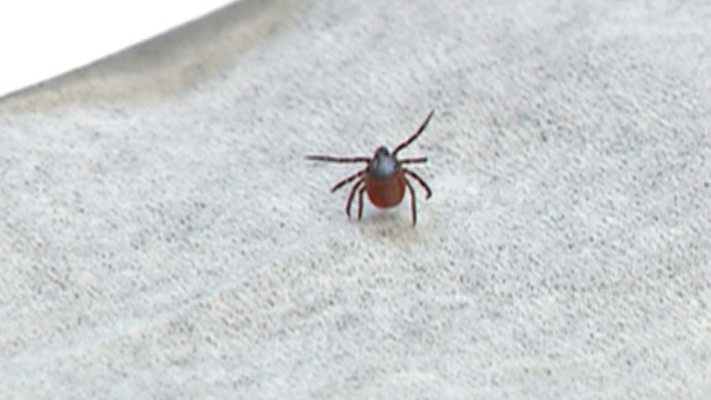 Consumer Reports: Tick protection and prevention