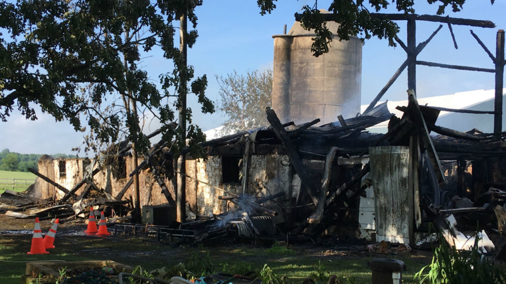 13 cattle killed in early morning Dodge Co. barn fire