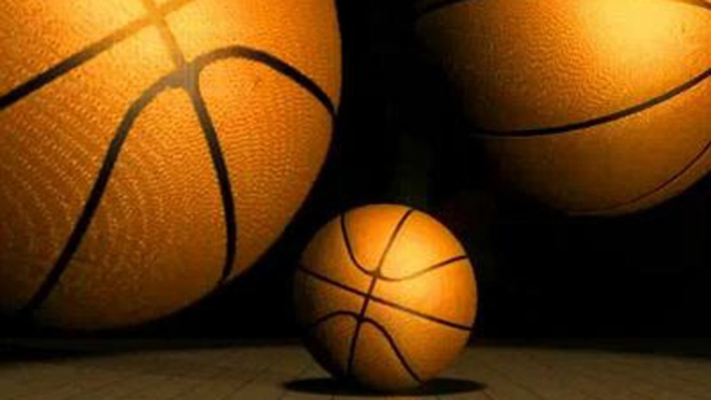 Marshall outlasts Wisconsin Dells at State Tournament
