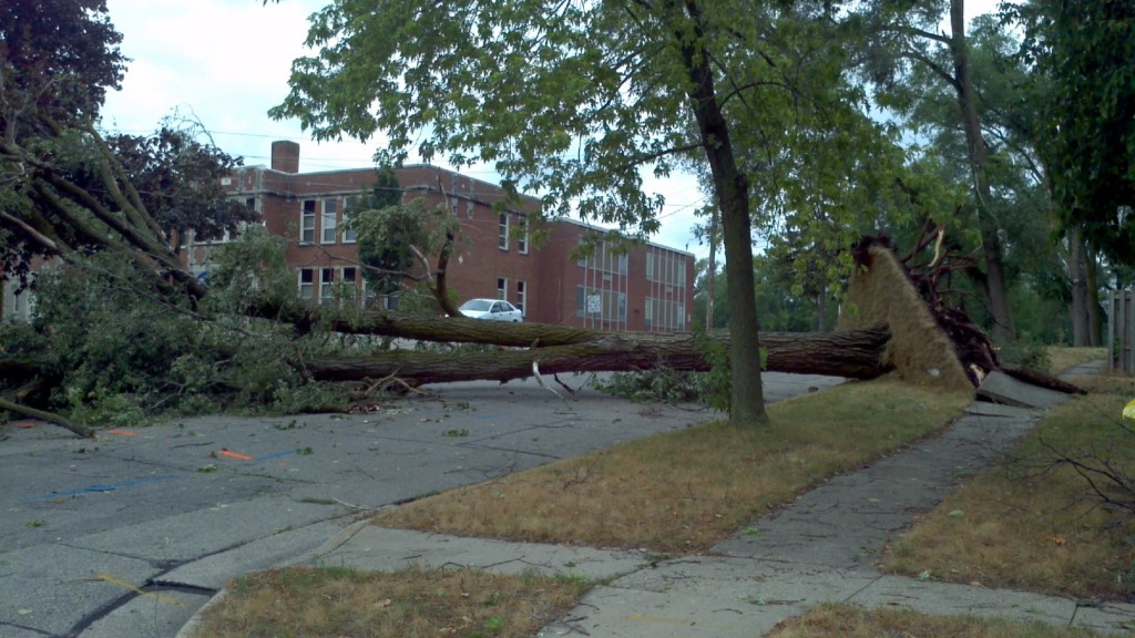 Storm damage cleanup under way