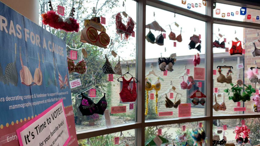Decorated bras raise money for 3D mammography machine in Mauston