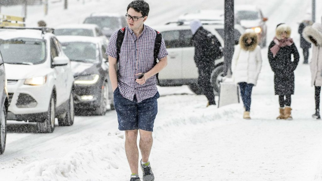 Image result for images of wearing shorts and hawaiian shirt in snow