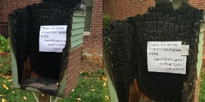 Little Free Library goes up in flames