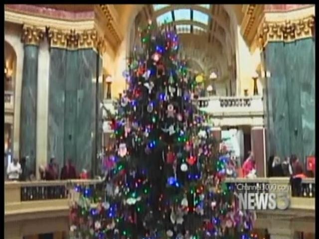 Capitol Christmas tree on its way from Central Wis.