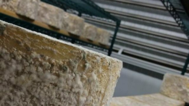 Cheesemakers concerned about FDA advice on wood board aging