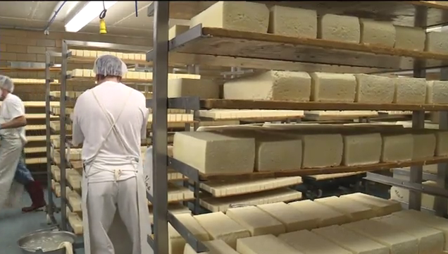 Higher milk prices not causing cheesemakers problems