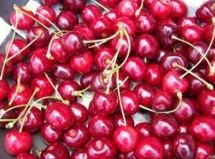 Midwest tart cherry crop destroyed by weather