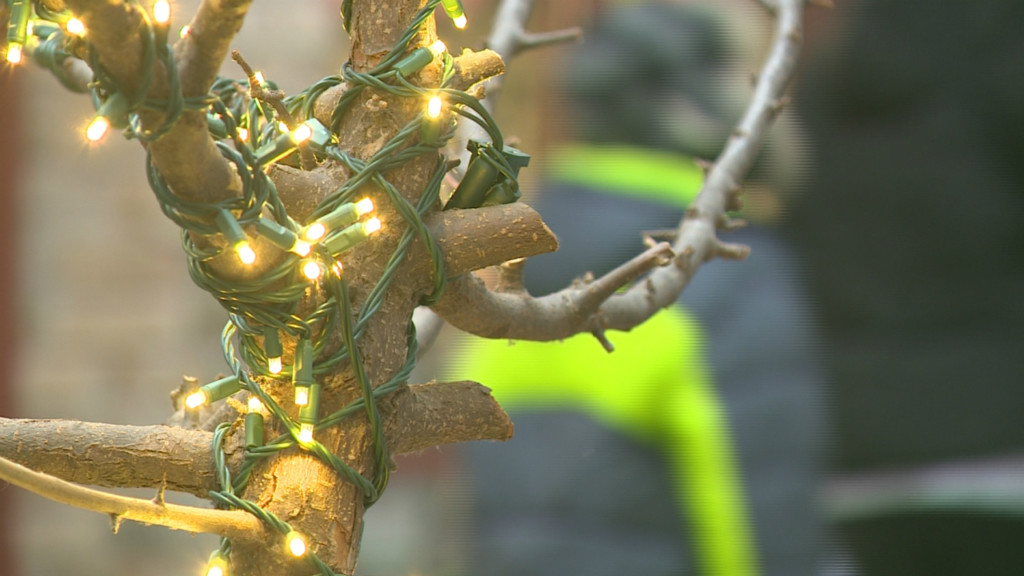 Winter storm warning is no gift to holiday shopping